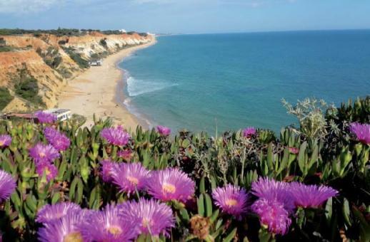 Sonnenparadies Algarve
